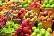سالانه ۱۶ میلیون تن میوه در کشور تولید میشود