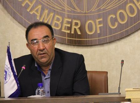 رئیس کمیسیون مصرف اتاق تعاون ایران: انتخاب ربیعی روزهای بهتری را برای تعاون رقم می زند