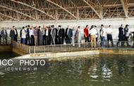 بازدید رئیس اتاق تعاون ایران از شرکت تعاونی خاویار قره برون