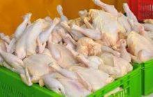 قیمت مرغ به ۹۰۰۰ تومان رسید