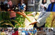 بخش تعاون در کشور آفریقای جنوبی/ بررسی نقش زنان در تعاونیها